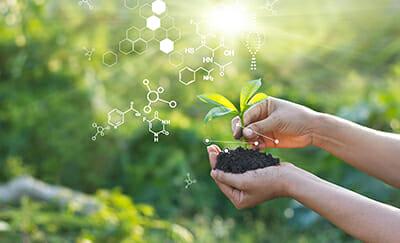 Magíster en ciencias biológicas: ¿Qué alternativas existen?